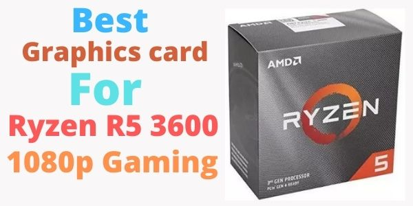 Best graphics card for r5 3600
